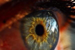 human-eye-Beaverton-Oregon
